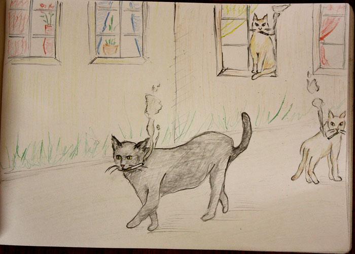 кошки курят