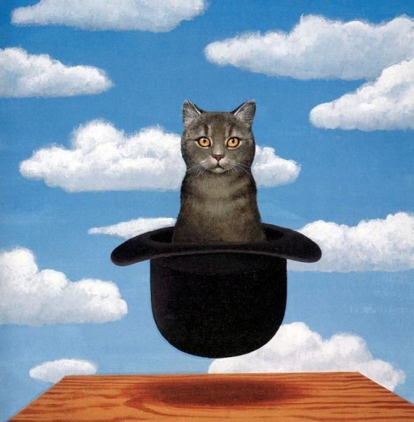 кот в котелке