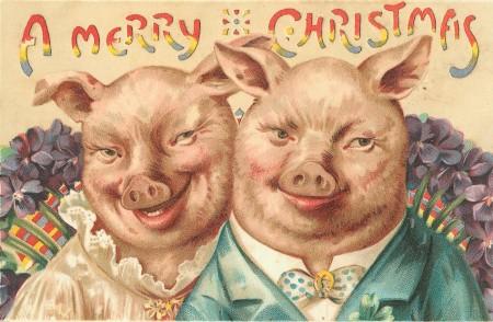 Christmas-pigs-450x294