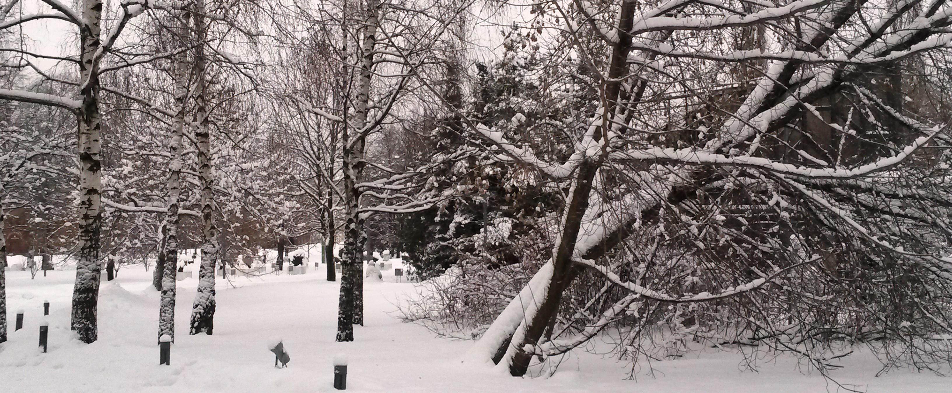 Снегопад как событие..