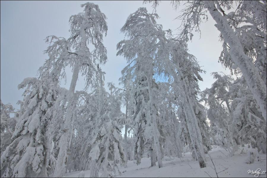 Гора Белая