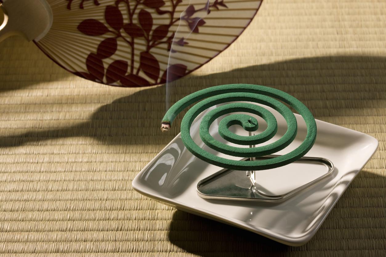 Пока спираль горит,  дым убивает приблизившихся комаров.