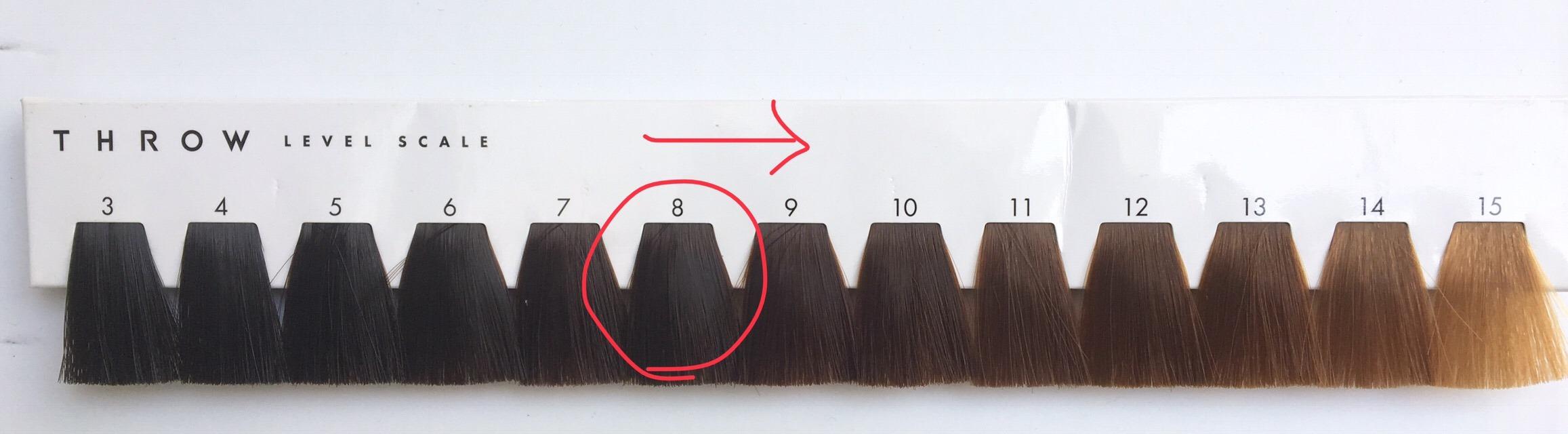 Специальная шкала цветов по которой у школьников выявляют запрещенный цвет волос.
