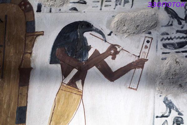 ибис-символ-бога-Тота