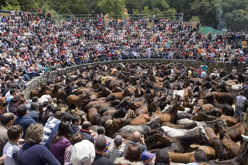 кельты стрижка Fiesta-de-la-Rapa-das-Bestas-Vista-del-curro-