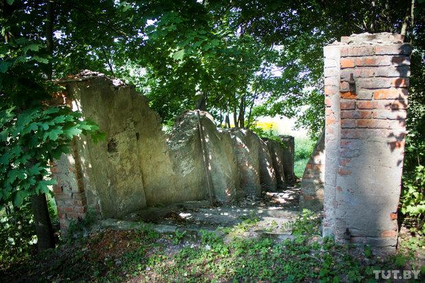 шкловское чистилище еврейское кладбище2