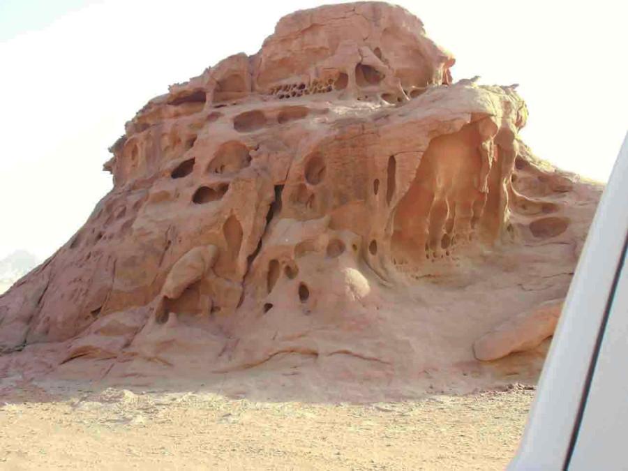 Сахара Шибика оазис1