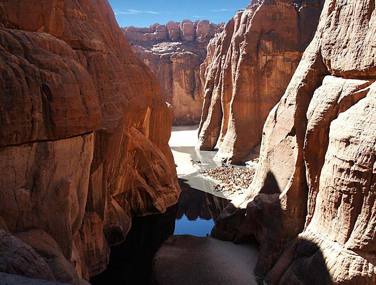 оазис Guelta d'Archei14