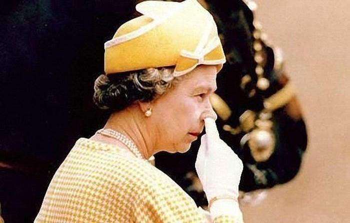 баба лиза нос1