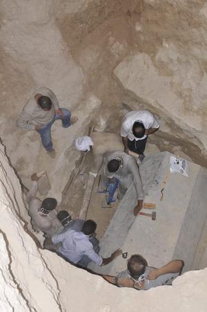 макака археолог2