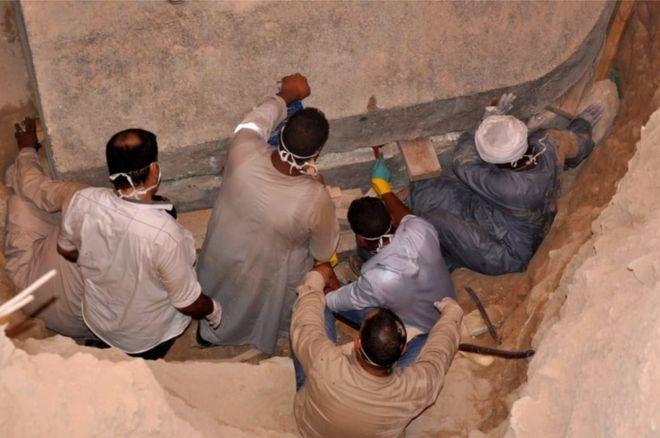 макака археолог9