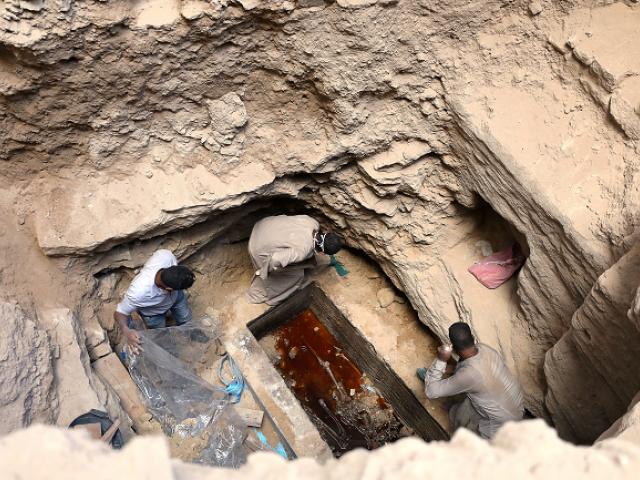 макака археолог8