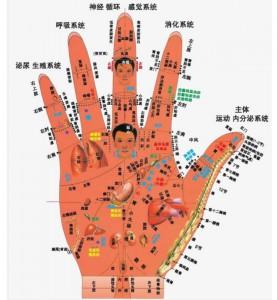 акупунктурные точки руки