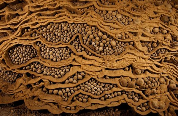 5-Пещерные жемчужины внутри пещеры Sơn Đoòng
