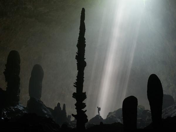 7-Сад кактусов в пещере Шондонг