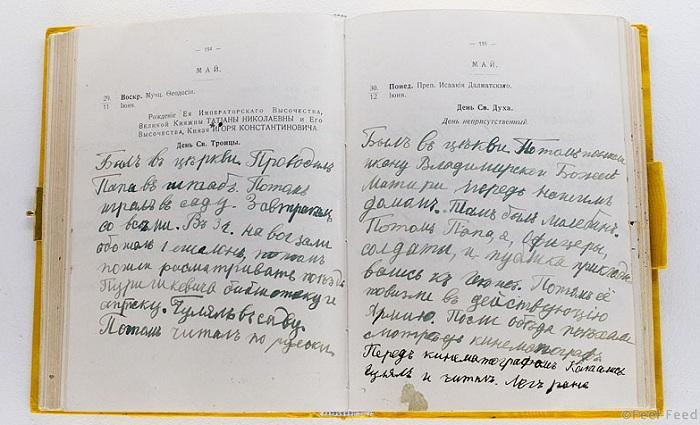 Страницы дневника Цесаревича.