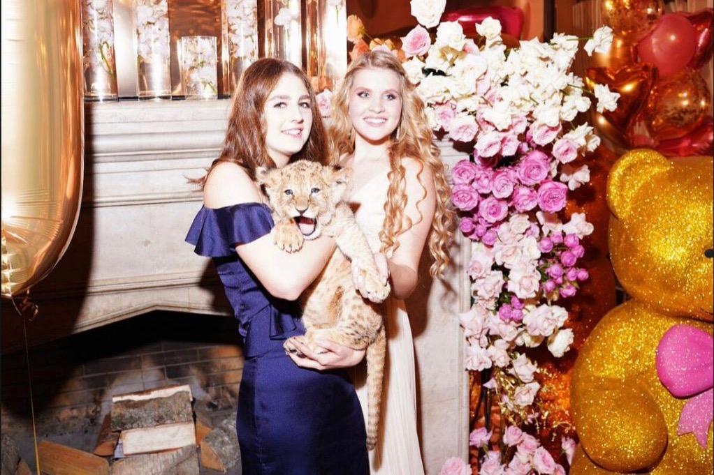 Львёнок для дочурки
