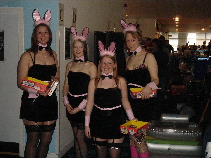 Bunny Girls A Go Go_disp800