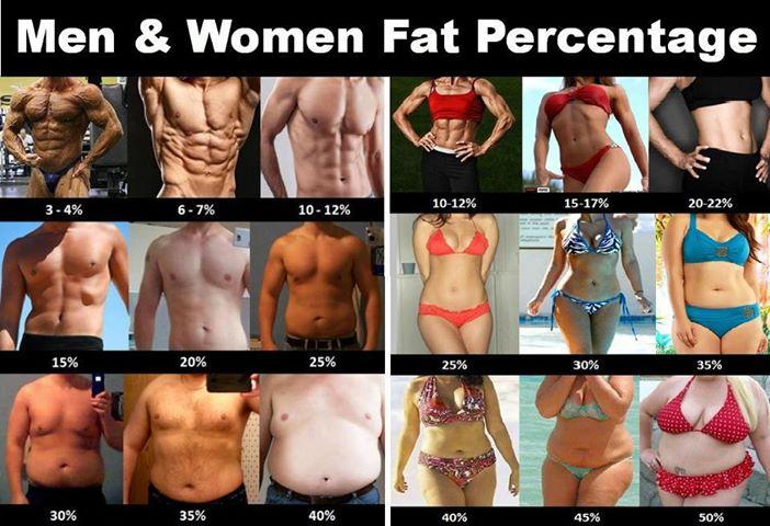 можно ли выкачать жир с живота