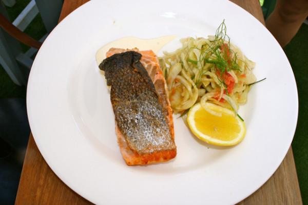 WEBWB_salmon