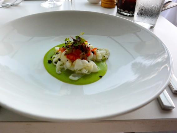 WEBBC_cuttlefish