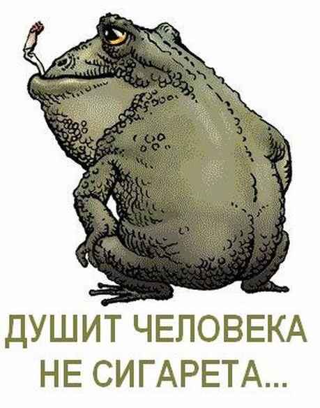Смешной, прикольная картинка жабы которая душит