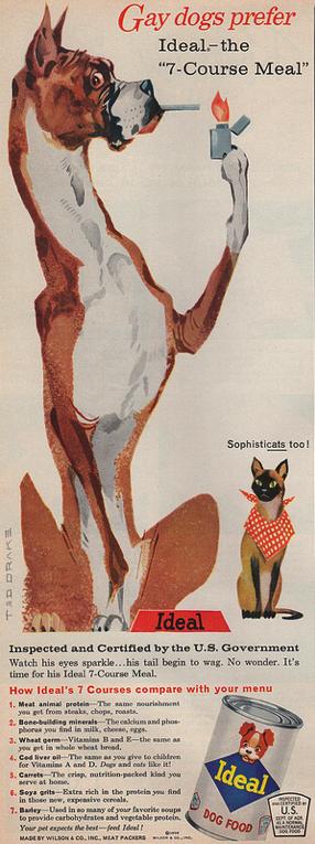 1959gaydogs