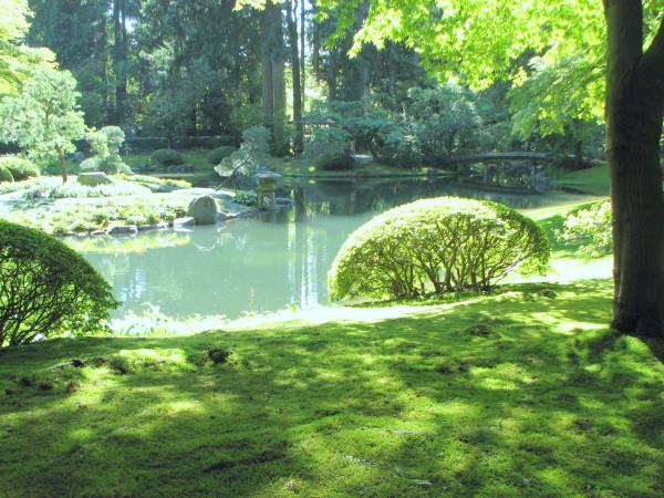 lush moss, Nitobe garden