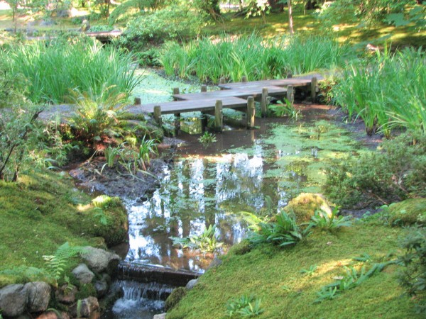 wooden bridge, Nitobe garden