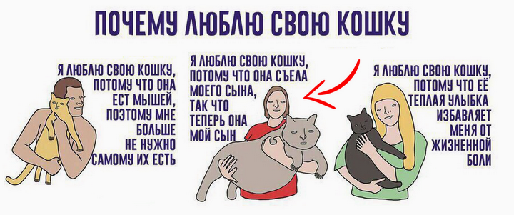 evil jokes on cats 720