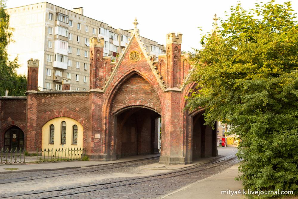 Kaliningrad 6-8.08.2013-1316-32