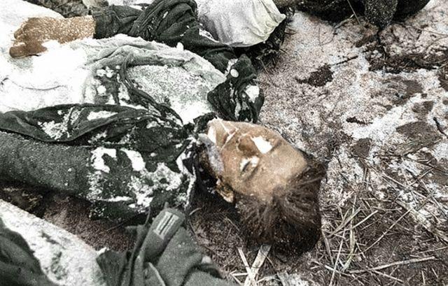 9 убитый немец Южный фронт