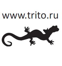 www.trito.ru