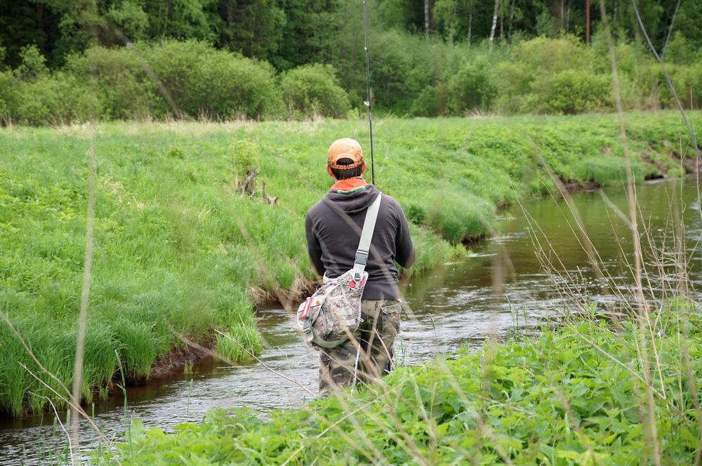 river_trout03