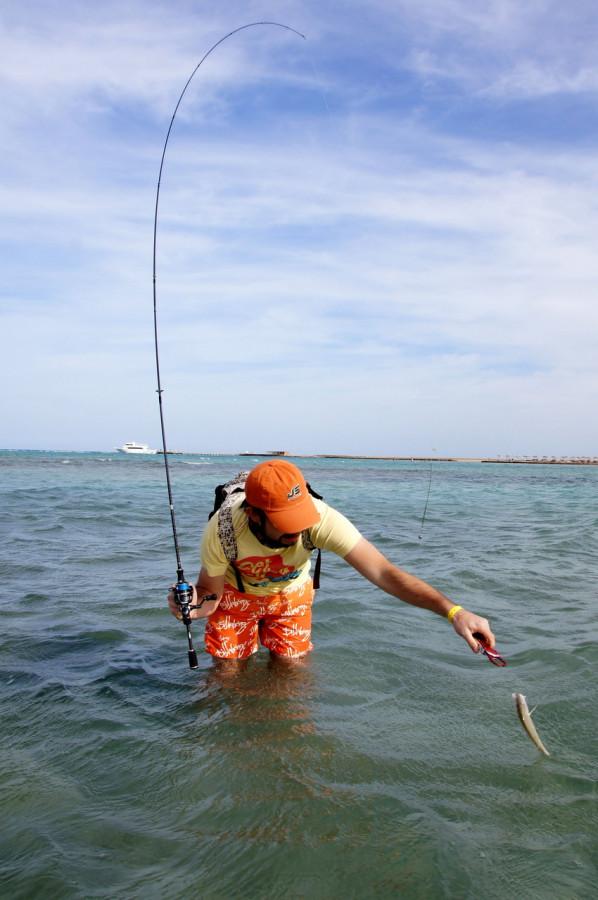 каким спиннингом ловить на море