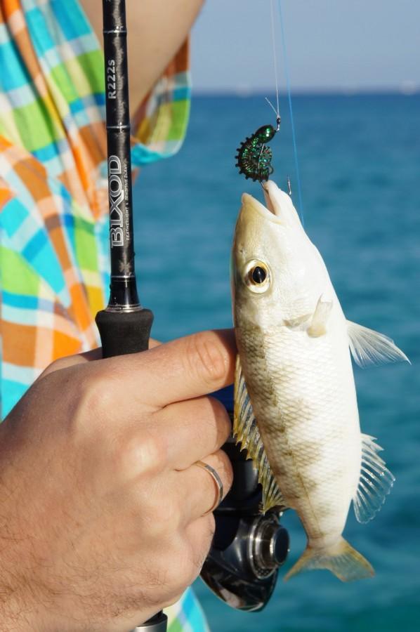 рыбалка на краснеть