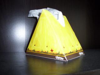 """""""MUKURO!!"""" (Pineapple kleenex box)"""