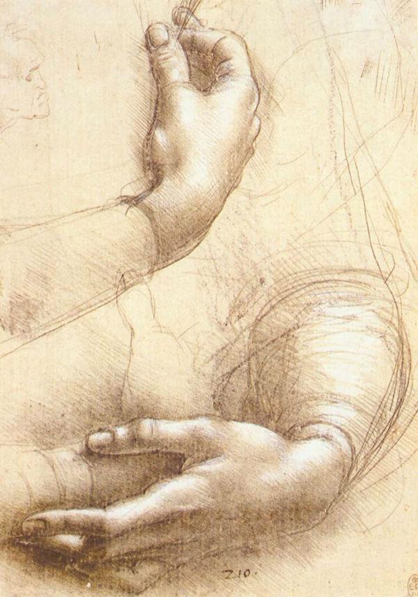 3-Леонардо да Винчи - Исследование рук - после 1474 - Виндзорский замок.jpg