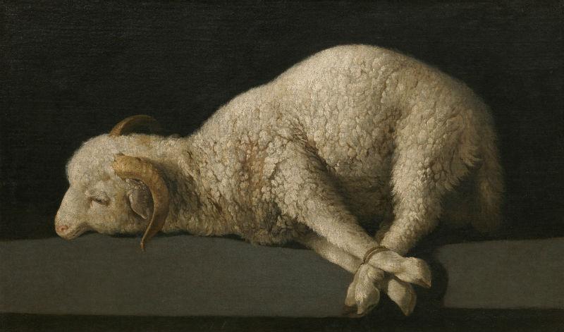 13-Франсиско де Сурбаран - Агнец божий (Agnus Dei) - 1640.jpg