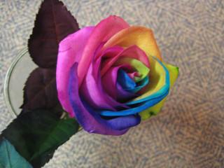 tiedye flower