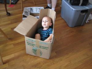 D inna Box