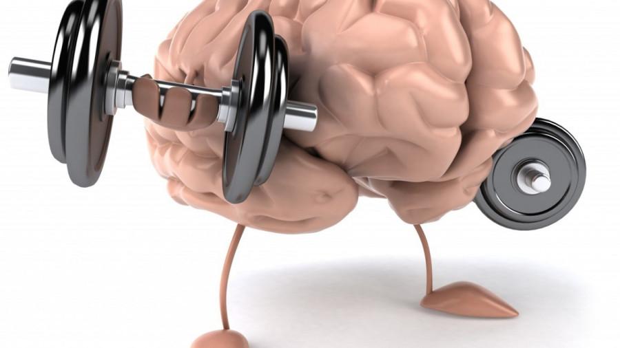 Trenirowka mozga