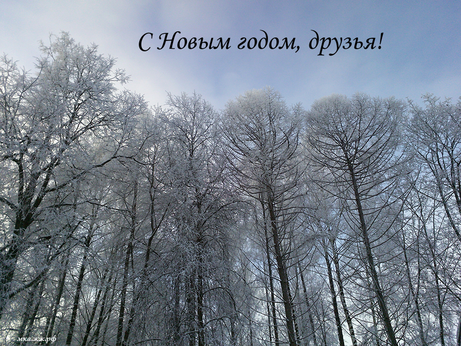IMG_110257_