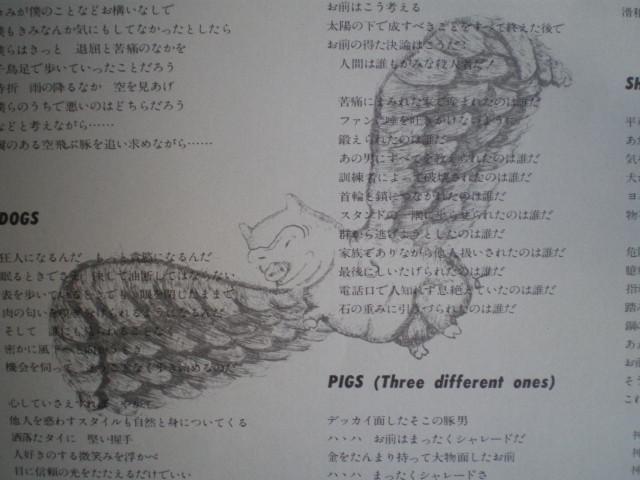 японская летающая свинка