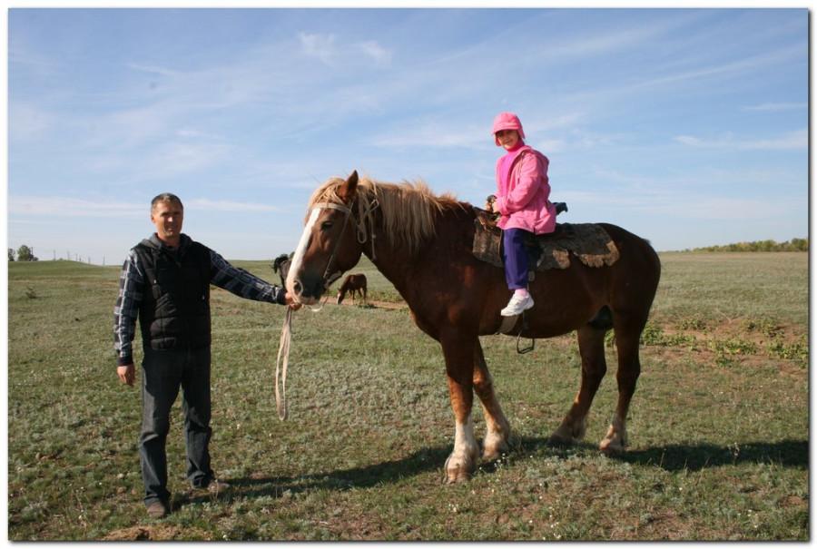 кони кира_002