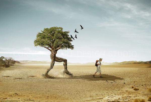 trees_walker1