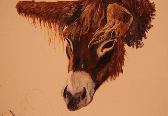 9 Acrylic Donkey