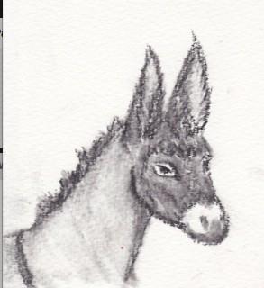 13 Charcoal Donkey