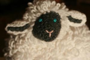 Junebug's lamb