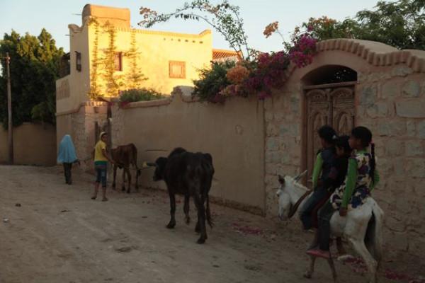 kids in Tunis